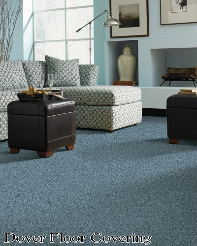We Sell All The Newest Styles and Colors of Carpet